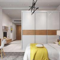 廣州韓森派實木定制臥室衣柜簡約現代歐式推拉門整體定制衣櫥組裝