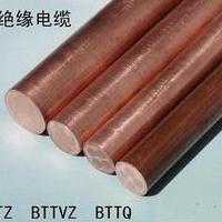 津亚线缆 BTTZ重型铜护套矿物绝缘电缆