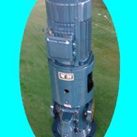 螺杆泵(立式)HSNS440R46N1M