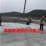 AMP-LM/100二阶反应型防水粘结涂料湖南道桥防水品牌