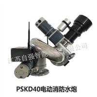PSKD40电控消防水炮
