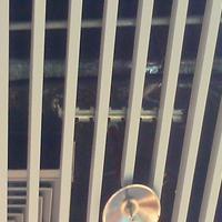 揭阳 室内铝方管隔断  木纹铝方通规格  型材铝方管厂家报价