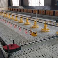 鸡苗漏粪板 养鸡塑料地板价格 耐高温漏粪地板