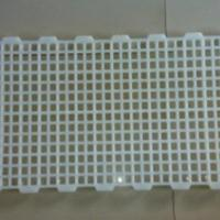 鸡用漏粪板塑料 塑料漏粪板规格 塑料漏粪板价格表