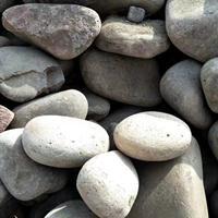 恒州供应铺路鹅卵石 庭院造景铺路摆件石子