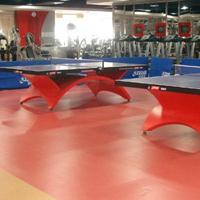 乒乓球室地板材料 乒乓球专用地板厂家