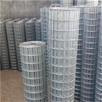 佳木斯防腐圈玉米铁丝网 焊接电焊网厂家直销热镀锌钢丝网
