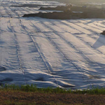 运城防水板HDPE土工膜生产厂家