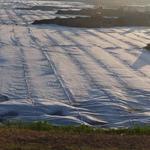 安阳HDPE复合土工膜-防水土工膜厂家价格