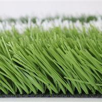 哈爾濱人造草坪,哈爾濱塑料草坪廠家,哈爾濱假草坪