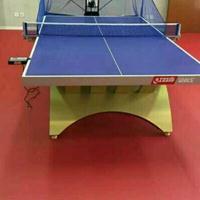 乒乓球室塑胶PK10赛车价格 乒乓球室PK10赛车材料