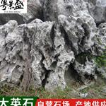 广东假山大英石景观 园林景观石英石 园林草坪石景观石产地供应