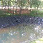 承德高强加筋防水土工膜-防腐蚀长丝土工布厂家支持定制