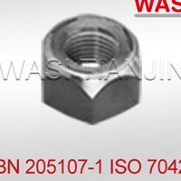 德国全钢自锁螺母BN205107