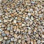 鵝卵石濾料_天然鵝卵石濾料價_四川鵝卵石濾料廠家。