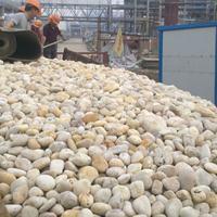 供应2018年度十佳鹅卵石滤料生产厂家使用寿命质量标准