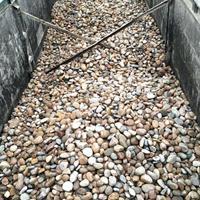 变电站鹅卵石多少钱,山东变电站鹅卵石质量