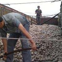 龙口鹅卵石/龙口变压器电厂滤油池水处理鹅卵石厂家供货上门