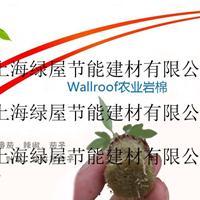 Wallroof农业岩棉/无土栽培岩棉/农业种植岩棉