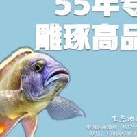 水产漆,水产养殖用漆,台湾南宝