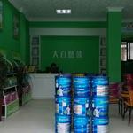 广东品牌水漆招商 儿童环保水漆 大自然水漆免费代理