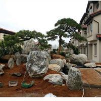 泰山石成批出售 景观园林工程 天然泰山石价格 广东泰山石那家好1