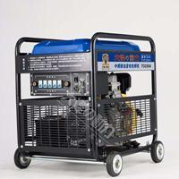 雙杠300A自發電電焊機