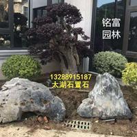 庭院太湖石摆景 公园太湖石假山 太湖石多少钱一吨? 广东太湖石