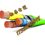 抗干扰编码器电缆,抗干扰伺服电机电缆,抗干扰信号电缆