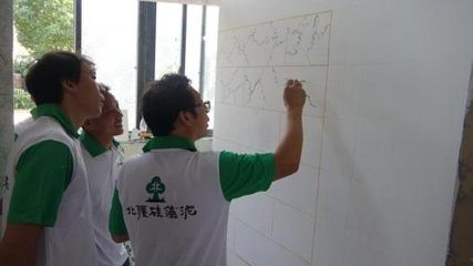 北疆硅藻泥多少钱一平  北疆硅藻泥好不好