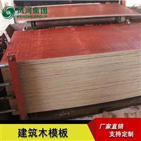 风和智慧工地建筑木模板覆膜桥梁建筑工地用板厂家直销