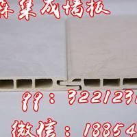 集成墙板集成墙面150外墙装饰板材料竹纤维集成墙板集成墙面