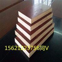 建筑模板杨木木质模板环保耐用不开裂星冠木业
