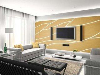 用硅藻泥做电视墙装饰材料  电视墙硅藻泥造型图片