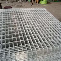 圈玉米网片-镀锌铁丝网片生产厂家供应