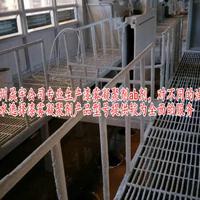 涂装废水处理用漆雾凝聚剂,漆雾凝聚剂生产厂家直销