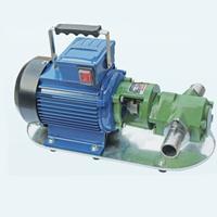 WCB-50手提齿轮油泵,齿轮泵生产厂家
