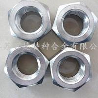 哈氏合金HastelloyB-2外六角螺母/螺栓