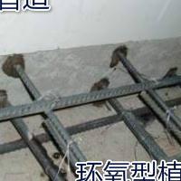 混凝土桥梁加固改造用化学锚固胶