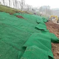 塑料三维土工网垫厂家规格多种选择