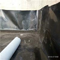 1.0毫米土工膜生产厂家