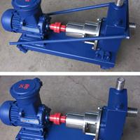 100FMZ-30耐腐蚀水泵 可移动不锈钢化工自吸泵
