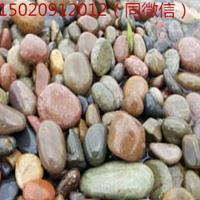 天津鹅卵石/天津变压器电厂滤油池水处理鹅卵石厂家供货上门