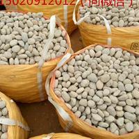 咸阳鹅卵石/咸阳变压器电厂滤油池水处理鹅卵石批发价格