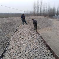 供应饮用水鹅卵石滤料生产厂家8--16毫米大量供应