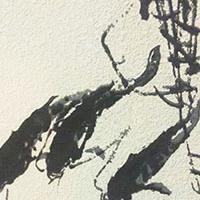 时间出品-硅藻艺术挂画 国画鱼系列