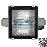 高效投光灯NTC9251海洋王价格、图片