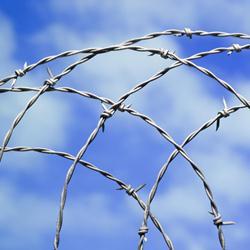 可定做优质刀片刺绳防护网专业生产厂家