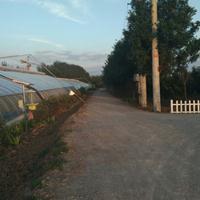 土壤固化剂生态路固化土抗疏力土壤稳定剂