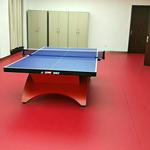 供应临沂塑胶运动地板、临沂运动地板、乒乓球运动地板